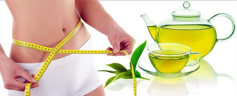 Le thé vert renforce le métabolisme et aide à la perte de poids